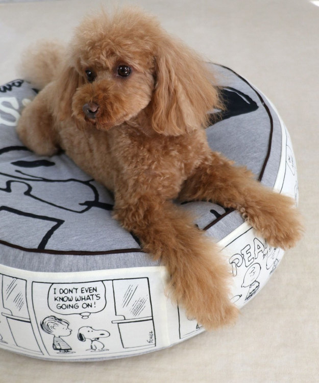 PET PARADISE   犬用品 ペットグッズ ベッド ベット ペットパラダイス ペット ベッド スヌーピー クッション (60cm) ハピーダンス 猫 ハウス介護 おしゃれ かわいい ふわふわ 通年 夏 秋 冬 クッション ソファ カドラー あごのせ キャラクター