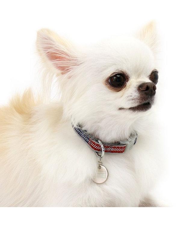 PET PARADISE フィールドグライド 首輪 反射×蓄光【S】 青