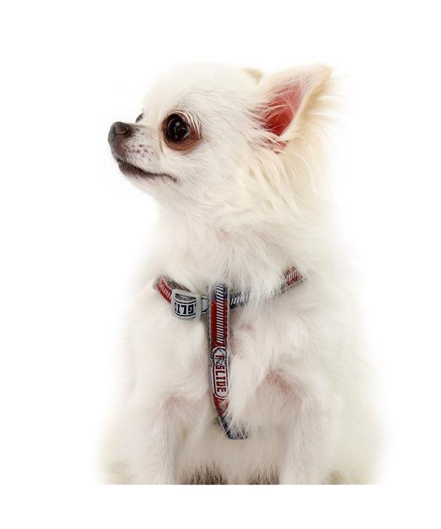 PET PARADISE フィールドグライド ハーネス 反射×蓄光【SM】