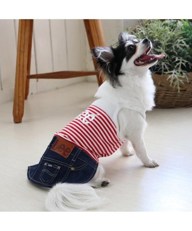 PET PARADISE Lee キャミインスカート上下[小型犬]