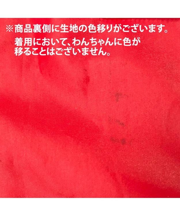 PET PARADISE フィールドグライド レインマント 赤×紺[小型犬]