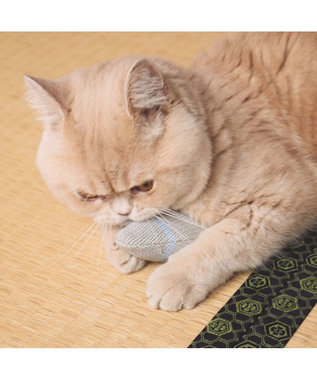 PET PARADISE ペットパラダイス 猫用おもちゃ キャットキッカー ニット ネコネスト 無彩色