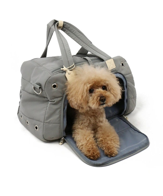 PET PARADISE ペットパラダイス ペットキャリーバッグM 前面開き グレー〔小型犬〕 グレー