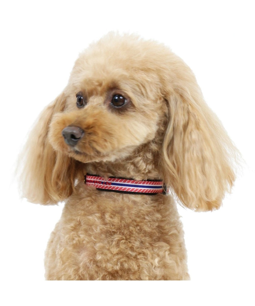 PET PARADISE ペットパラダイス ロゴ ボーダー 首輪 赤 3S〔小型犬〕 赤
