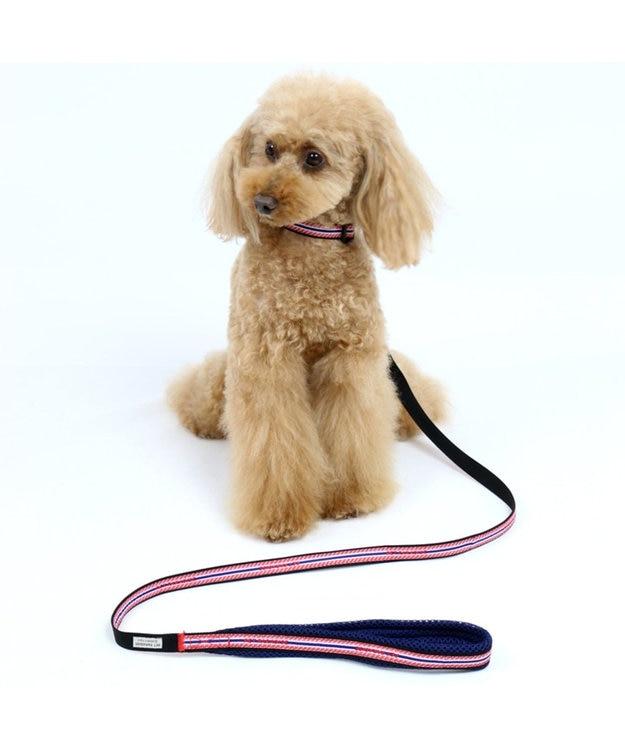 PET PARADISE ペットパラダイス ロゴ ボーダー リード 赤 4S~3S〔小型犬〕