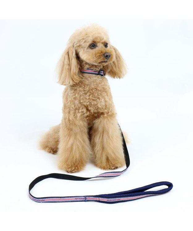 PET PARADISE ペットパラダイス ロゴ ボーダー リード 青 SS~S〔小型犬〕