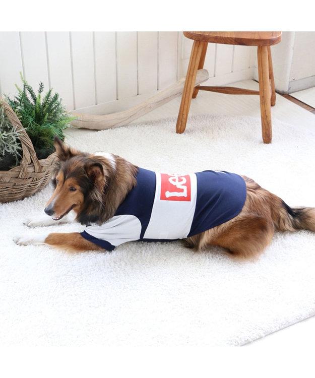 PET PARADISE Lee ボックス ロゴ Tシャツ 紺〔中・大型犬〕