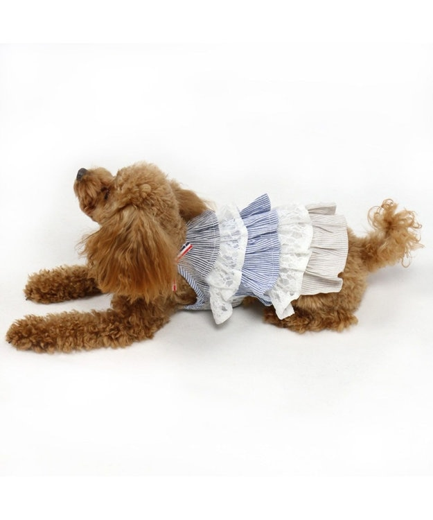PET PARADISE ペットパラダイス フリル ワンピース ボーダー〔小型犬〕