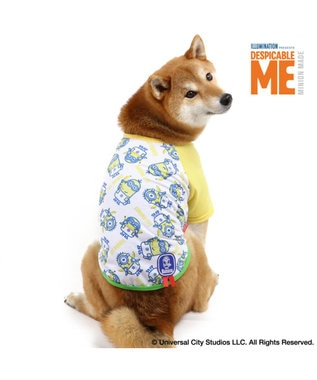 PET PARADISE ミニオン バナナ Tシャツ〔中型犬〕 Minion 黄