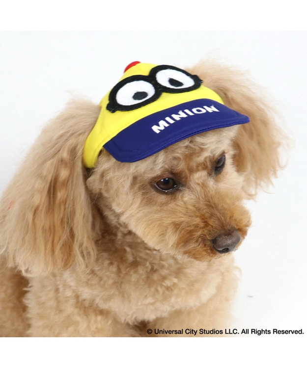 PET PARADISE ミニオン ペット用帽子 キャップ 〔中・大型犬〕