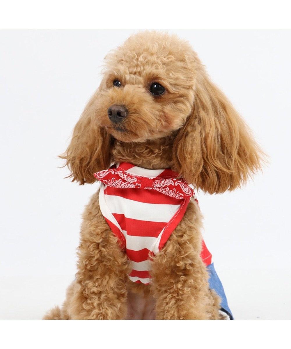 PET PARADISE J.PRESS クールマックス スカート付き上下タンク〔小型犬〕 白~オフホワイト
