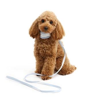 PET PARADISE ペットパラダイス リード付き首輪 水色 パピー〔小型犬〕 水色