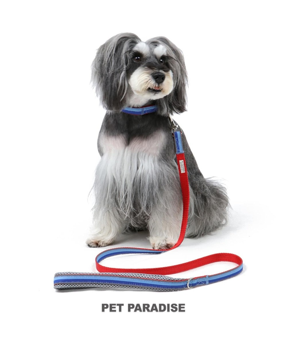 PET PARADISE ペットパラダイス 切替首輪&リード 青 〔小型犬〕 ペット4S/3S/SS/S 犬具 青