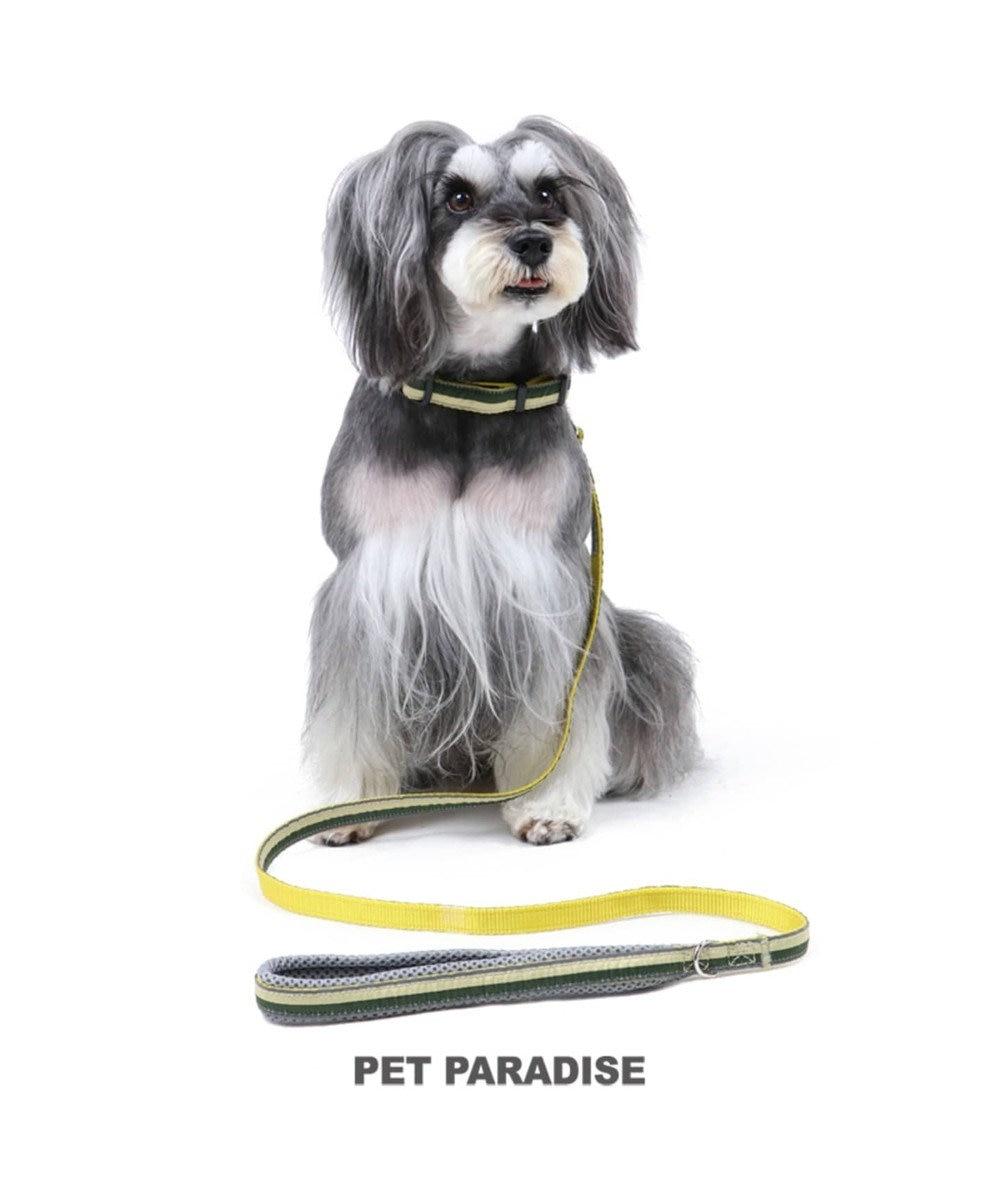PET PARADISE ペットパラダイス 切替首輪&リード 緑 〔小型犬〕ペット4S/3S/SS/S 犬具 黄緑