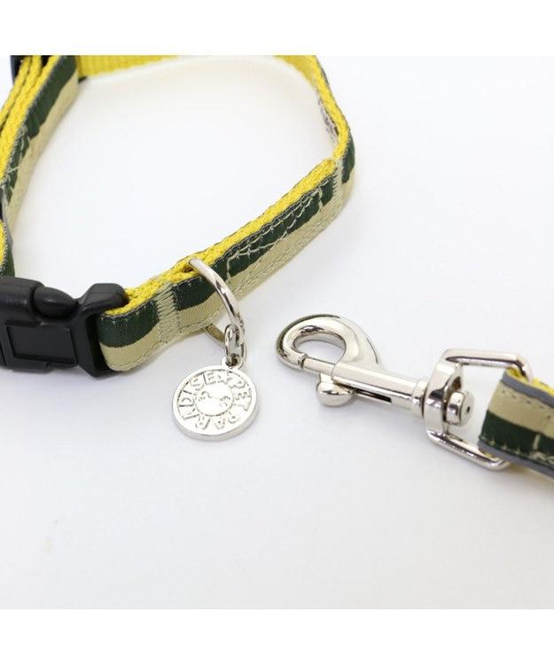 PET PARADISE ペットパラダイス 切替首輪&リード 緑 〔小型犬〕ペット4S/3S/SS/S 犬具