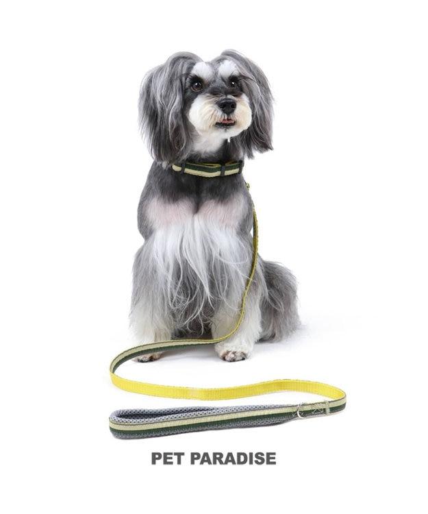 PET PARADISE ペットパラダイス 切替首輪&リード 緑 〔中・大型犬〕ペットSM/M/L 犬具