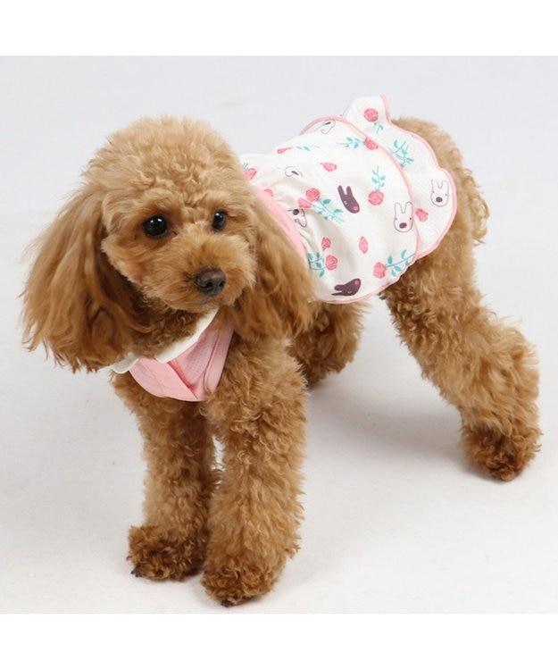 PET PARADISE リサとガスパール クールマックス 接触冷感 虫よけ ワンピ〔小型犬〕