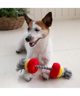 PET PARADISE ペットパラダイス バーベル 青 犬用おもちゃ おもちゃ トイ 青