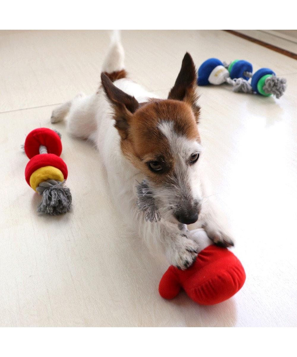 PET PARADISE ペットパラダイス ボクシング 青 犬用おもちゃ おもちゃ トイ 青