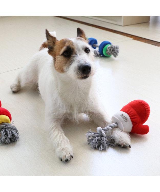 PET PARADISE ペットパラダイス ボクシング 青 犬用おもちゃ おもちゃ トイ