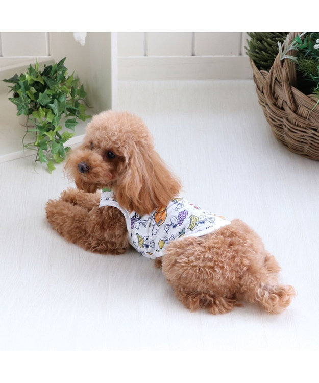 PET PARADISE スヌーピー 接触冷感 ポケットクール タンクトップ〔 超小型・小型犬〕