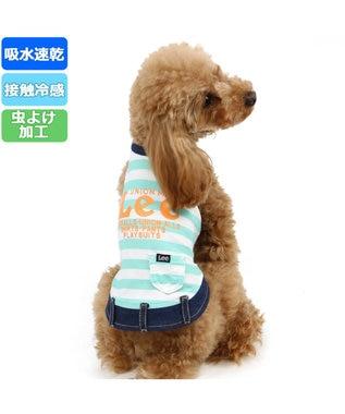 PET PARADISE Lee クールマックス 縞 メッシュタンクトップ〔小型犬〕 青緑
