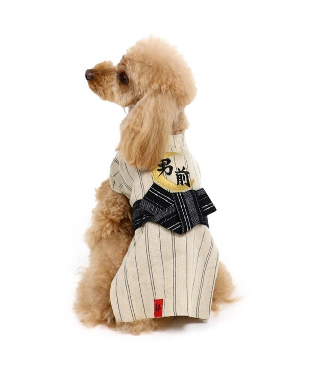 PET PARADISE ペットパラダイス 男前 浴衣〔超小型・小型犬〕