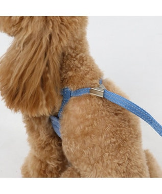PET PARADISE ペットパラダイス フリル ハーネスリード ペット4S〔超小型犬〕 水色