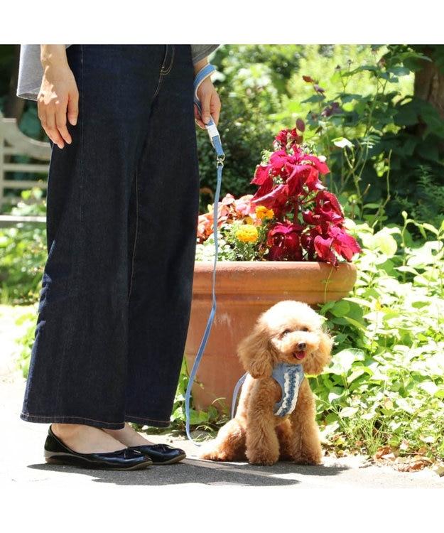 PET PARADISE ペットパラダイス フリル ハーネスリード ペット S〔小型犬〕