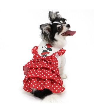 PET PARADISE ディズニー ミニーマウス ドット柄 ワンピース〔超小型・小型犬〕 赤