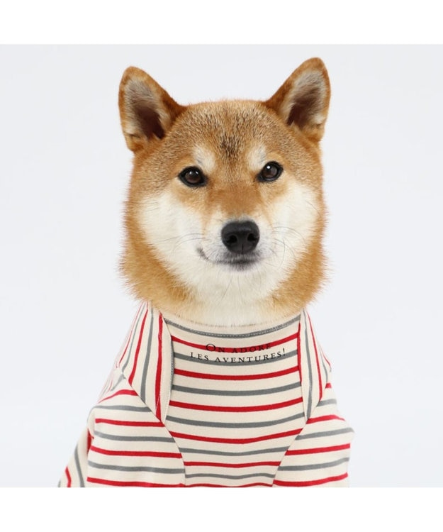 PET PARADISE リサとガスパール ボートネック トレーナー〔中型犬〕