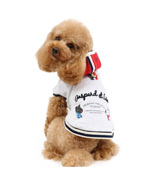 PET PARADISE リサとガスパール ボーダー 重ね着パーカー 〔超小型・小型犬〕