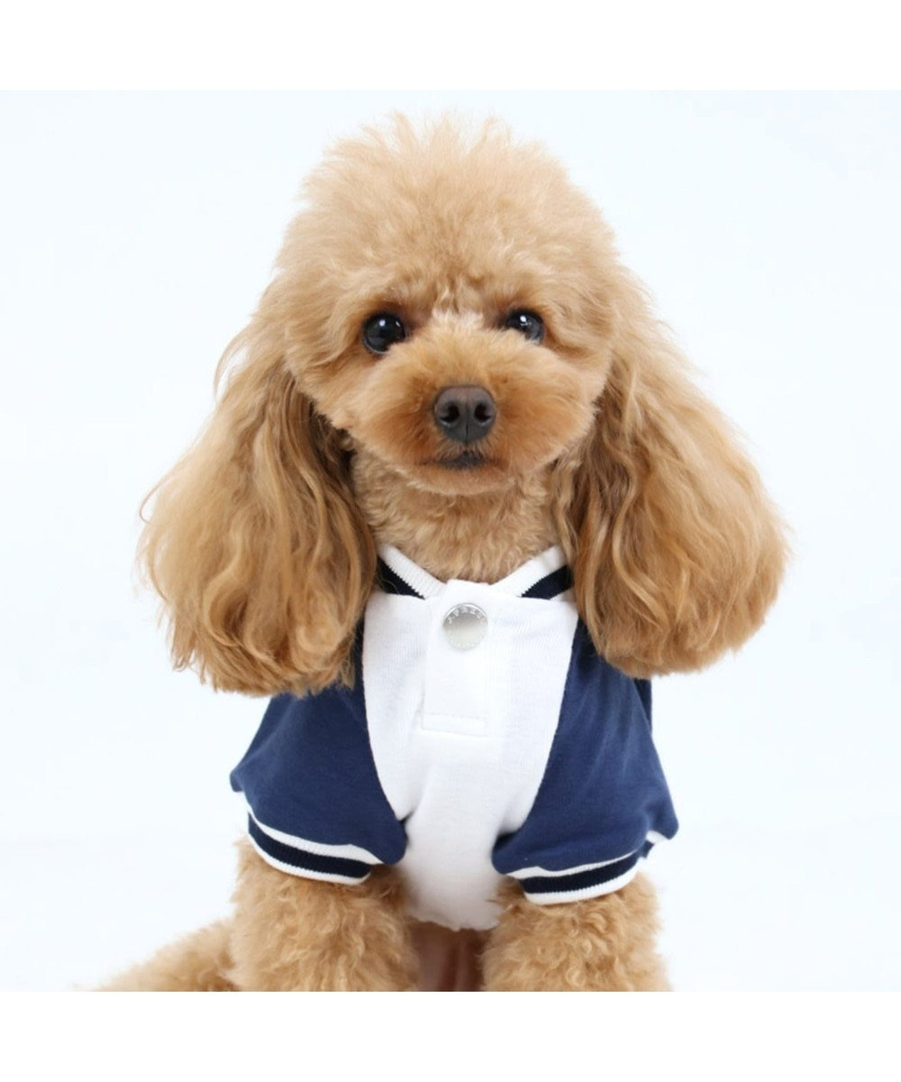 PET PARADISE J.PRESS フライストレーナー 〔超小型・小型犬〕 白~オフホワイト