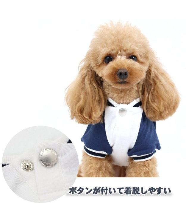 PET PARADISE J.PRESS フライストレーナー 〔超小型・小型犬〕