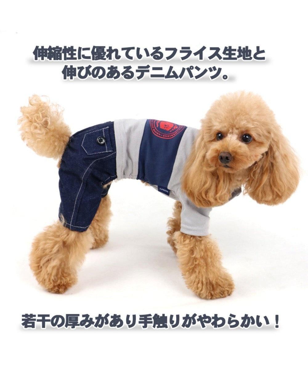 PET PARADISE J.PRESS 配色Tシャツ パンツ付き上下 〔超小型・小型犬〕 グレー