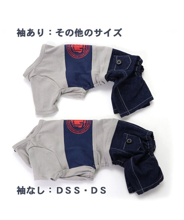 PET PARADISE J.PRESS 配色Tシャツ パンツ付き上下 〔超小型・小型犬〕