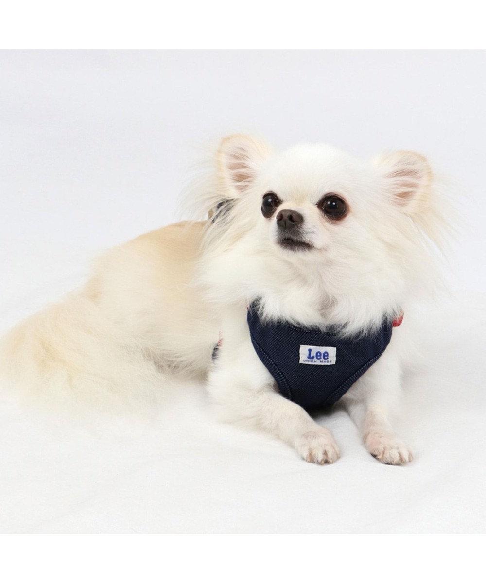 PET PARADISE Lee リュック付 ハーネス ペットSS〔小型犬〕 紺(ネイビー・インディゴ)
