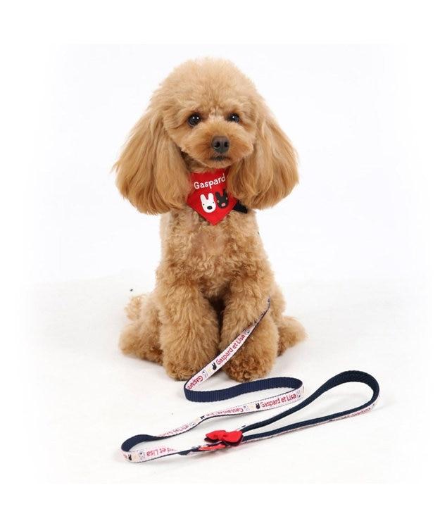 PET PARADISE リサとガスパール ロゴ柄 リード SS~S〔小型犬〕