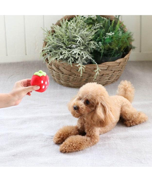 PET PARADISE ペットパラダイス 犬用おもちゃ 苺コロコロトイ(赤)