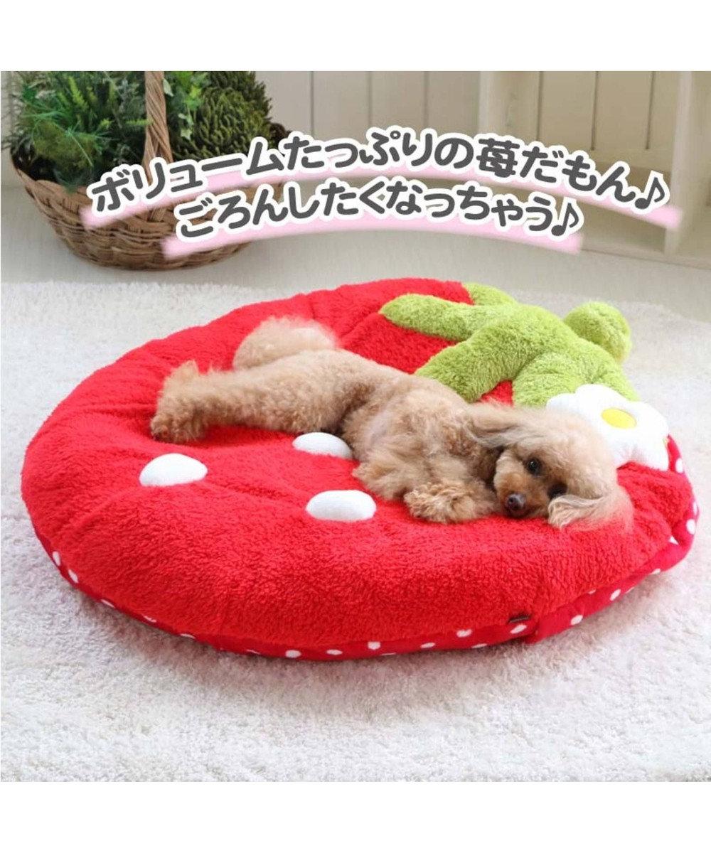 PET PARADISE 【ネット限定】ペットパラダイス 野いちご ふわでかクッション 赤 赤