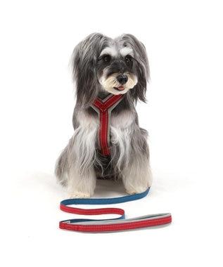 PET PARADISE 【終了】ペットパラダイス アクティブハーネス 赤 ペット3S〔小型犬〕 赤