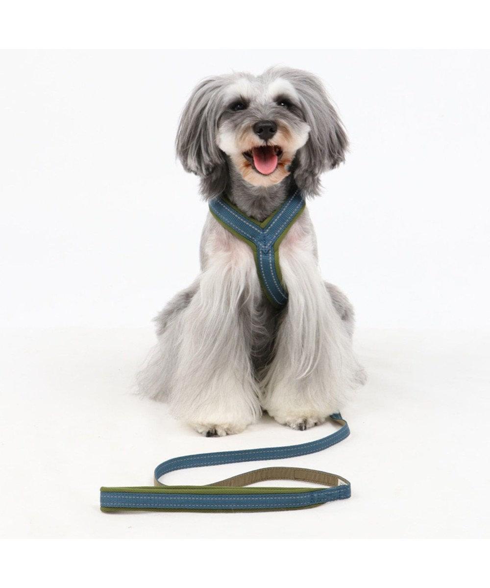 PET PARADISE ペットパラダイス シンプル リード 青 ペットSM 〔中型犬〕 青