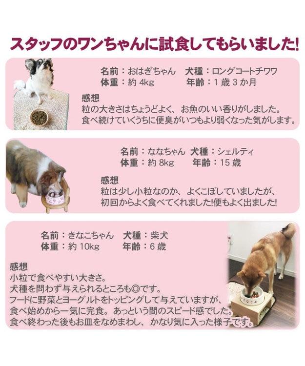 PET PARADISE ドッグフード ドライフード リアルフード フローラ 1kg
