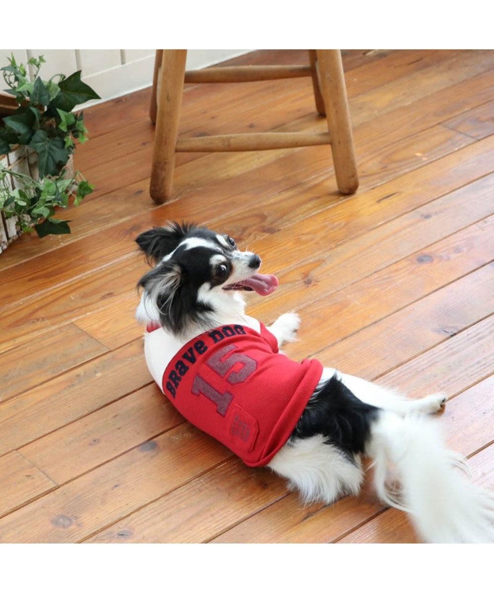 PET PARADISE ペットパラダイス 切替 ペティヒートTシャツ 赤 〔超・小型犬〕 赤