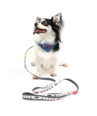 PET PARADISE ディズニー ミッキーマウス フレンズ 首輪 ペットS〔小型犬〕 白~オフホワイト