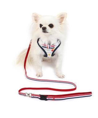 PET PARADISE リサとガスパール 風船柄 ハーネスリード SS〔小型犬〕 マルチカラー