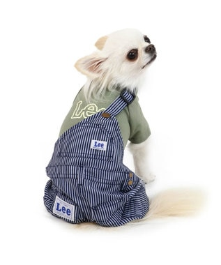 PET PARADISE Lee ヒッコリー ワンショル パンツ つなぎ〔超小型・小型犬〕 緑