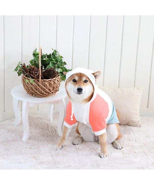 PET PARADISE Lee 春 パーカー ホワイト&グリーン〔中型犬〕