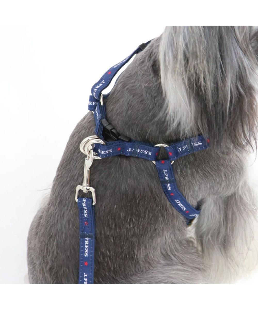 PET PARADISE J.PRESS マドラス ハーネス&リード 3S 小型犬 マルチカラー