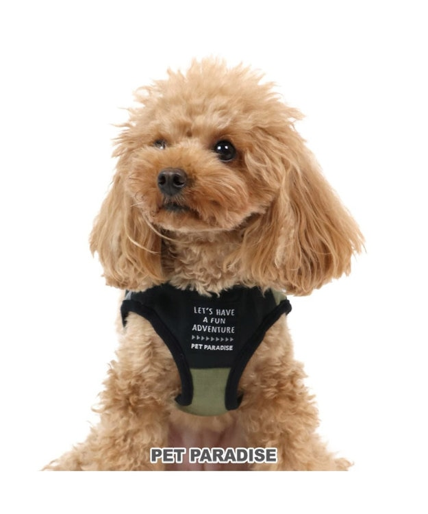 PET PARADISE ペットパラダイス ハーネス カーキ×黒 ペットS 〔小型犬〕